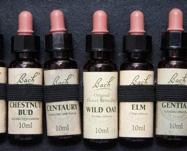 Fleurs de Bach : des remèdes naturels pour votre santé !